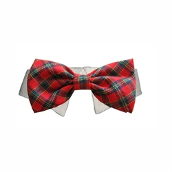 Christmas Tartan Dog Collar & Bow Tie Roxy & Lulu, wooflink, susan lanci, dog clothes, small dog clothes, urban pup, pooch outfitters, dogo, hip doggie, doggie design, small dog dress, pet clotes, dog boutique. pet boutique, bloomingtails dog boutique, dog raincoat, dog rain coat, pet raincoat, dog shampoo, pet shampoo, dog bathrobe, pet bathrobe, dog carrier, small dog carrier, doggie couture, pet couture, dog football, dog toys, pet toys, dog clothes sale, pet clothes sale, shop local, pet store, dog store, dog chews, pet chews, worthy dog, dog bandana, pet bandana, dog halloween, pet halloween, dog holiday, pet holiday, dog teepee, custom dog clothes, pet pjs, dog pjs, pet pajamas, dog pajamas,dog sweater, pet sweater, dog hat, fabdog, fab dog, dog puffer coat, dog winter ja