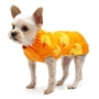 Cozy Duck Sweater Roxy & Lulu, wooflink, susan lanci, dog clothes, small dog clothes, urban pup, pooch outfitters, dogo, hip doggie, doggie design, small dog dress, pet clotes, dog boutique. pet boutique, bloomingtails dog boutique, dog raincoat, dog rain coat, pet raincoat, dog shampoo, pet shampoo, dog bathrobe, pet bathrobe, dog carrier, small dog carrier, doggie couture, pet couture, dog football, dog toys, pet toys, dog clothes sale, pet clothes sale, shop local, pet store, dog store, dog chews, pet chews, worthy dog, dog bandana, pet bandana, dog halloween, pet halloween, dog holiday, pet holiday, dog teepee, custom dog clothes, pet pjs, dog pjs, pet pajamas, dog pajamas,dog sweater, pet sweater, dog hat, fabdog, fab dog, dog puffer coat, dog winter ja