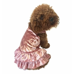 Crushin on YOU Velvet Tutu Dog Dress in 3 Colors wooflink, susan lanci, dog clothes, small dog clothes, urban pup, pooch outfitters, dogo, hip doggie, doggie design, small dog dress, pet clotes, dog boutique. pet boutique, bloomingtails dog boutique, dog raincoat, dog rain coat, pet raincoat, dog shampoo, pet shampoo, dog bathrobe, pet bathrobe, dog carrier, small dog carrier, doggie couture, pet couture, dog football, dog toys, pet toys, dog clothes sale, pet clothes sale, shop local, pet store, dog store, dog chews, pet chews, worthy dog, dog bandana, pet bandana, dog halloween, pet halloween, dog holiday, pet holiday, dog teepee, custom dog clothes, pet pjs, dog pjs, pet pajamas, dog pajamas,dog sweater, pet sweater, dog hat, fabdog, fab dog, dog puffer coat, dog winter jacket, dog col