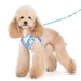 EasyGo Hawaii Harness & Lead - dgo-easyhawaii