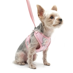 EasyGo Pineapple Harness in Pink or Blue  dog bowls,susan lanci, puppia,wooflink, luxury dog boutique,tonimari,pet clothes, dog clothes, puppy clothes, pet store, dog store, puppy boutique store, dog boutique, pet boutique, puppy boutique, Bloomingtails, dog, small dog clothes, large dog clothes, large dog costumes, small dog costumes, pet stuff, Halloween dog, puppy Halloween, pet Halloween, clothes, dog puppy Halloween, dog sale, pet sale, puppy sale, pet dog tank, pet tank, pet shirt, dog shirt, puppy shirt,puppy tank, I see spot, dog collars, dog leads, pet collar, pet lead,puppy collar, puppy lead, dog toys, pet toys, puppy toy, dog beds, pet beds, puppy bed,  beds,dog mat, pet mat, puppy mat, fab dog pet sweater, dog sweater, dog winter, pet winter,dog raincoat, pet raincoat