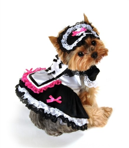 French Maid Dog Costume - anit-frenchL-6RY