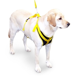 Front Safety Harness
