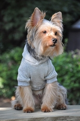 Flex-Fit Dog Hoodie - Gray Roxy & Lulu, wooflink, susan lanci, dog clothes, small dog clothes, urban pup, pooch outfitters, dogo, hip doggie, doggie design, small dog dress, pet clotes, dog boutique. pet boutique, bloomingtails dog boutique, dog raincoat, dog rain coat, pet raincoat, dog shampoo, pet shampoo, dog bathrobe, pet bathrobe, dog carrier, small dog carrier, doggie couture, pet couture, dog football, dog toys, pet toys, dog clothes sale, pet clothes sale, shop local, pet store, dog store, dog chews, pet chews, worthy dog, dog bandana, pet bandana, dog halloween, pet halloween, dog holiday, pet holiday, dog teepee, custom dog clothes, pet pjs, dog pjs, pet pajamas, dog pajamas,dog sweater, pet sweater, dog hat, fabdog, fab dog, dog puffer coat, dog winter ja