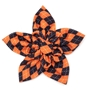 Halloween Argyle Flower Roxy & Lulu, wooflink, susan lanci, dog clothes, small dog clothes, urban pup, pooch outfitters, dogo, hip doggie, doggie design, small dog dress, pet clotes, dog boutique. pet boutique, bloomingtails dog boutique, dog raincoat, dog rain coat, pet raincoat, dog shampoo, pet shampoo, dog bathrobe, pet bathrobe, dog carrier, small dog carrier, doggie couture, pet couture, dog football, dog toys, pet toys, dog clothes sale, pet clothes sale, shop local, pet store, dog store, dog chews, pet chews, worthy dog, dog bandana, pet bandana, dog halloween, pet halloween, dog holiday, pet holiday, dog teepee, custom dog clothes, pet pjs, dog pjs, pet pajamas, dog pajamas,dog sweater, pet sweater, dog hat, fabdog, fab dog, dog puffer coat, dog winter ja