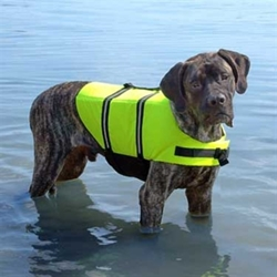 Neon Yellow Dog Life Jacket