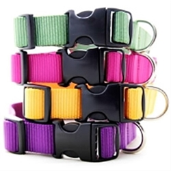 Nylon Webbing Collars & Leads-27 Colors dog bowls,susan lanci, puppia,wooflink, luxury dog boutique,tonimari,pet clothes, dog clothes, puppy clothes, pet store, dog store, puppy boutique store, dog boutique, pet boutique, puppy boutique, Bloomingtails, dog, small dog clothes, large dog clothes, large dog costumes, small dog costumes, pet stuff, Halloween dog, puppy Halloween, pet Halloween, clothes, dog puppy Halloween, dog sale, pet sale, puppy sale, pet dog tank, pet tank, pet shirt, dog shirt, puppy shirt,puppy tank, I see spot, dog collars, dog leads, pet collar, pet lead,puppy collar, puppy lead, dog toys, pet toys, puppy toy, dog beds, pet beds, puppy bed,  beds,dog mat, pet mat, puppy mat, fab dog pet sweater, dog sweater, dog winter, pet winter,dog raincoat, pet raincoat,