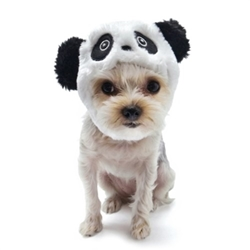 Panda Dog Hat puppy bed,  beds,dog mat, pet mat, puppy mat, fab dog pet sweater, dog swepet clothes, dog clothes, puppy clothes, pet store, dog store, puppy boutique store, dog boutique, pet boutique, puppy boutique, Bloomingtails, dog, small dog clothes, large dog clothes, large dog costumes, small dog costumes, pet stuff, Halloween dog, puppy Halloween, pet Halloween, clothes, dog puppy Halloween, dog sale, pet sale, puppy sale, pet dog tank, pet tank, pet shirt, dog shirt, puppy shirt,puppy tank, I see spot, dog collars, dog leads, pet collar, pet lead,puppy collar, puppy lead, dog toys, pet toys, puppy toy, dog beds, pet beds, puppy bed,  beds,dog mat, pet mat, puppy mat, fab dog pet sweater, dog sweater, dog winter, pet winter,dog raincoat, pet rain