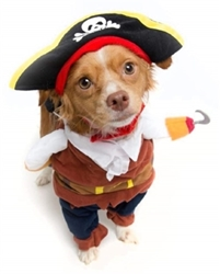 Pirate Costume with Arms & Hat wooflink, susan lanci, dog clothes, small dog clothes, urban pup, pooch outfitters, dogo, hip doggie, doggie design, small dog dress, pet clotes, dog boutique. pet boutique, bloomingtails dog boutique, dog raincoat, dog rain coat, pet raincoat, dog shampoo, pet shampoo, dog bathrobe, pet bathrobe, dog carrier, small dog carrier, doggie couture, pet couture, dog football, dog toys, pet toys, dog clothes sale, pet clothes sale, shop local, pet store, dog store, dog chews, pet chews, worthy dog, dog bandana, pet bandana, dog halloween, pet halloween, dog holiday, pet holiday, dog teepee, custom dog clothes, pet pjs, dog pjs, pet pajamas, dog pajamas,dog sweater, pet sweater, dog hat, fabdog, fab dog, dog puffer coat, dog winter jacket, dog col