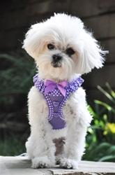 Polka Dot Ruffle American River Harness in 3 Colors dog bowls,susan lanci, puppia,wooflink, luxury dog boutique,tonimari,pet clothes, dog clothes, puppy clothes, pet store, dog store, puppy boutique store, dog boutique, pet boutique, puppy boutique, Bloomingtails, dog, small dog clothes, large dog clothes, large dog costumes, small dog costumes, pet stuff, Halloween dog, puppy Halloween, pet Halloween, clothes, dog puppy Halloween, dog sale, pet sale, puppy sale, pet dog tank, pet tank, pet shirt, dog shirt, puppy shirt,puppy tank, I see spot, dog collars, dog leads, pet collar, pet lead,puppy collar, puppy lead, dog toys, pet toys, puppy toy, dog beds, pet beds, puppy bed,  beds,dog mat, pet mat, puppy mat, fab dog pet sweater, dog sweater, dog winter, pet winter,dog raincoat, pet raincoat,
