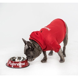 Pupreme Box Logo Hoodie in 2 Colors Roxy & Lulu, wooflink, susan lanci, dog clothes, small dog clothes, urban pup, pooch outfitters, dogo, hip doggie, doggie design, small dog dress, pet clotes, dog boutique. pet boutique, bloomingtails dog boutique, dog raincoat, dog rain coat, pet raincoat, dog shampoo, pet shampoo, dog bathrobe, pet bathrobe, dog carrier, small dog carrier, doggie couture, pet couture, dog football, dog toys, pet toys, dog clothes sale, pet clothes sale, shop local, pet store, dog store, dog chews, pet chews, worthy dog, dog bandana, pet bandana, dog halloween, pet halloween, dog holiday, pet holiday, dog teepee, custom dog clothes, pet pjs, dog pjs, pet pajamas, dog pajamas,dog sweater, pet sweater, dog hat, fabdog, fab dog, dog puffer coat, dog winter ja