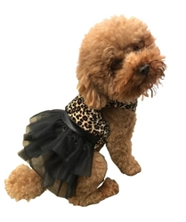 Retro Leopard Velvet Tutu Dress Roxy & Lulu, wooflink, susan lanci, dog clothes, small dog clothes, urban pup, pooch outfitters, dogo, hip doggie, doggie design, small dog dress, pet clotes, dog boutique. pet boutique, bloomingtails dog boutique, dog raincoat, dog rain coat, pet raincoat, dog shampoo, pet shampoo, dog bathrobe, pet bathrobe, dog carrier, small dog carrier, doggie couture, pet couture, dog football, dog toys, pet toys, dog clothes sale, pet clothes sale, shop local, pet store, dog store, dog chews, pet chews, worthy dog, dog bandana, pet bandana, dog halloween, pet halloween, dog holiday, pet holiday, dog teepee, custom dog clothes, pet pjs, dog pjs, pet pajamas, dog pajamas,dog sweater, pet sweater, dog hat, fabdog, fab dog, dog puffer coat, dog winter ja