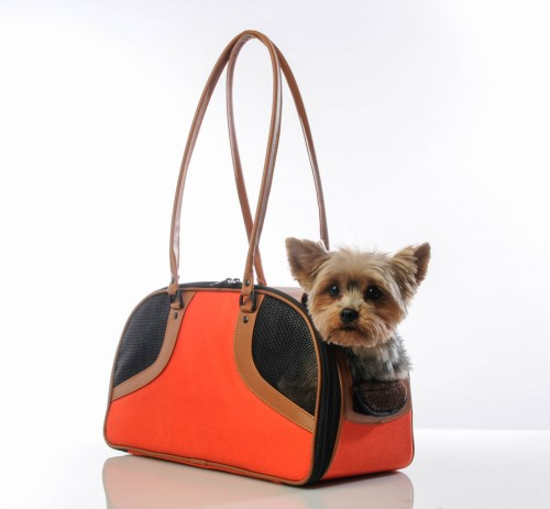Roxy Bag in Orange wooflink, susan lanci, dog clothes, small dog clothes, urban pup, pooch outfitters, dogo, hip doggie, doggie design, small dog dress, pet clotes, dog boutique. pet boutique, bloomingtails dog boutique, dog raincoat, dog rain coat, pet raincoat, dog shampoo, pet shampoo, dog bathrobe, pet bathrobe, dog carrier, small dog carrier, doggie couture, pet couture, dog football, dog toys, pet toys, dog clothes sale, pet clothes sale, shop local, pet store, dog store, dog chews, pet chews, worthy dog, dog bandana, pet bandana, dog halloween, pet halloween, dog holiday, pet holiday, dog teepee, custom dog clothes, pet pjs, dog pjs, pet pajamas, dog pajamas,dog sweater, pet sweater, dog hat, fabdog, fab dog, dog puffer coat, dog winter jacket, dog col