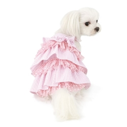 Snow Flower Cancan Dress in 2 Colors Roxy & Lulu, wooflink, susan lanci, dog clothes, small dog clothes, urban pup, pooch outfitters, dogo, hip doggie, doggie design, small dog dress, pet clotes, dog boutique. pet boutique, bloomingtails dog boutique, dog raincoat, dog rain coat, pet raincoat, dog shampoo, pet shampoo, dog bathrobe, pet bathrobe, dog carrier, small dog carrier, doggie couture, pet couture, dog football, dog toys, pet toys, dog clothes sale, pet clothes sale, shop local, pet store, dog store, dog chews, pet chews, worthy dog, dog bandana, pet bandana, dog halloween, pet halloween, dog holiday, pet holiday, dog teepee, custom dog clothes, pet pjs, dog pjs, pet pajamas, dog pajamas,dog sweater, pet sweater, dog hat, fabdog, fab dog, dog puffer coat, dog winter ja