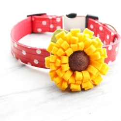 Sunflower Dog Collar Flower Roxy & Lulu, wooflink, susan lanci, dog clothes, small dog clothes, urban pup, pooch outfitters, dogo, hip doggie, doggie design, small dog dress, pet clotes, dog boutique. pet boutique, bloomingtails dog boutique, dog raincoat, dog rain coat, pet raincoat, dog shampoo, pet shampoo, dog bathrobe, pet bathrobe, dog carrier, small dog carrier, doggie couture, pet couture, dog football, dog toys, pet toys, dog clothes sale, pet clothes sale, shop local, pet store, dog store, dog chews, pet chews, worthy dog, dog bandana, pet bandana, dog halloween, pet halloween, dog holiday, pet holiday, dog teepee, custom dog clothes, pet pjs, dog pjs, pet pajamas, dog pajamas,dog sweater, pet sweater, dog hat, fabdog, fab dog, dog puffer coat, dog winter ja