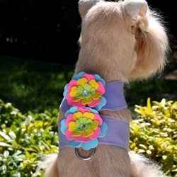 Tinkie Fantasy Flower Harness by Susan Lanci in 4 Colors