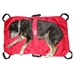 Dog Transport Stretcher - wp-trans