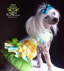 Water Colors Couture Harness Dress Roxy & Lulu, wooflink, susan lanci, dog clothes, small dog clothes, urban pup, pooch outfitters, dogo, hip doggie, doggie design, small dog dress, pet clotes, dog boutique. pet boutique, bloomingtails dog boutique, dog raincoat, dog rain coat, pet raincoat, dog shampoo, pet shampoo, dog bathrobe, pet bathrobe, dog carrier, small dog carrier, doggie couture, pet couture, dog football, dog toys, pet toys, dog clothes sale, pet clothes sale, shop local, pet store, dog store, dog chews, pet chews, worthy dog, dog bandana, pet bandana, dog halloween, pet halloween, dog holiday, pet holiday, dog teepee, custom dog clothes, pet pjs, dog pjs, pet pajamas, dog pajamas,dog sweater, pet sweater, dog hat, fabdog, fab dog, dog puffer coat, dog winter ja